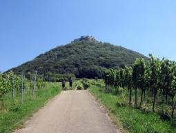 Cap al cim del castell