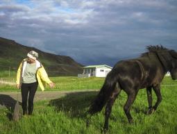 A reveure Islàndia!