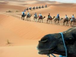 S de Sahara