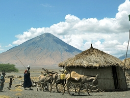 Tanzània – Chamazi