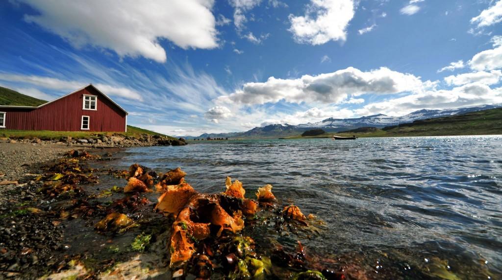atli-börkur-seaside-eskifjordur-iceland