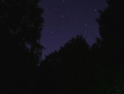 Island of stars