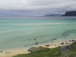 SEEDS 062. / Talknafjordur in the Westfjords / 2016 – Islàndia