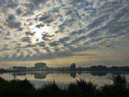 SIW-1705 / State Forestry Twijzel / 2017 – Holanda