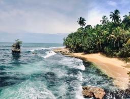 Naturalesa Caribenya