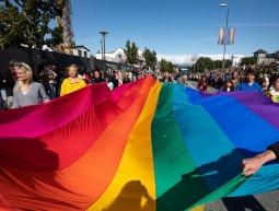 Pride diversity